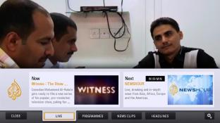 Al Jazeera screenshot