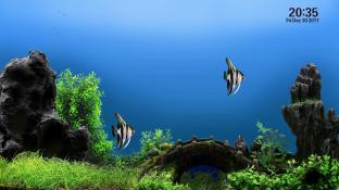 AquaTV trial screenshot1