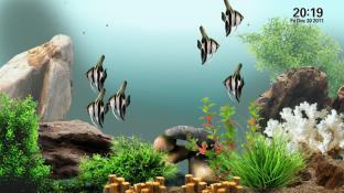 AquaTV trial screenshot2