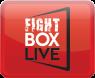 Fightbox_dummy