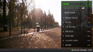 네이버 screenshot2