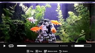 Aquarium screenshot1