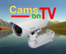 CamsOnTV
