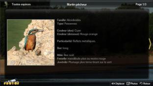 Plume blanche screenshot1