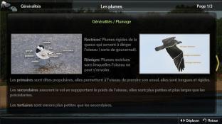 Plume blanche screenshot3