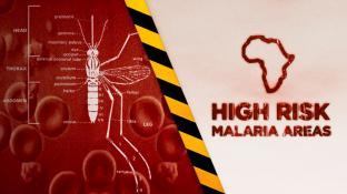 High Risk Malaria Areas screenshot