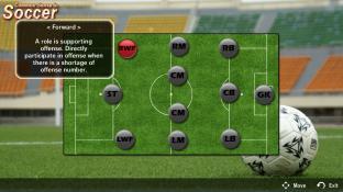 Common sense in soccer screenshot1